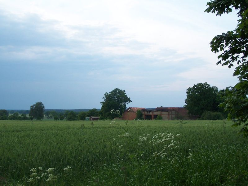 Der Eckelhof vom Acker  hinter dem Hof